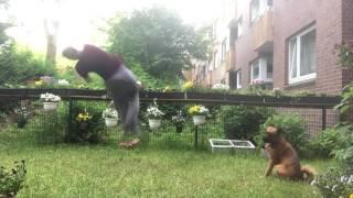 Backflip 360 and dog 😁