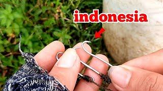Câu lươn.test lưỡi câu lươn indonesia_tập185//fishing eel. Indonesian eel hook