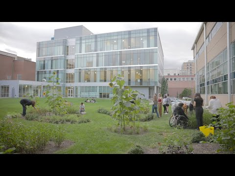 The Tyler School of Art and Architecture's Natural Dye Garden