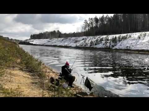 российские каналы про рыбалку