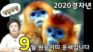 2020경자년 9월 원숭이띠 운세