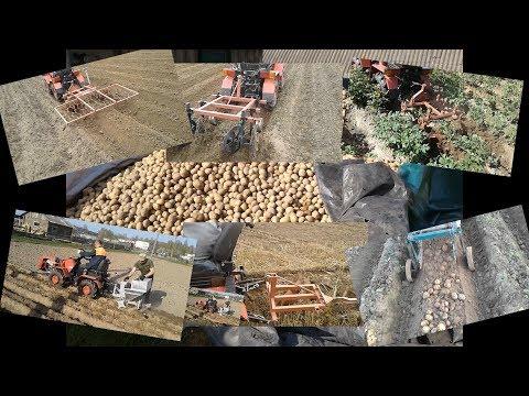 посадка,обработка и уборка картофеля минитрактором мтз..Коротко.