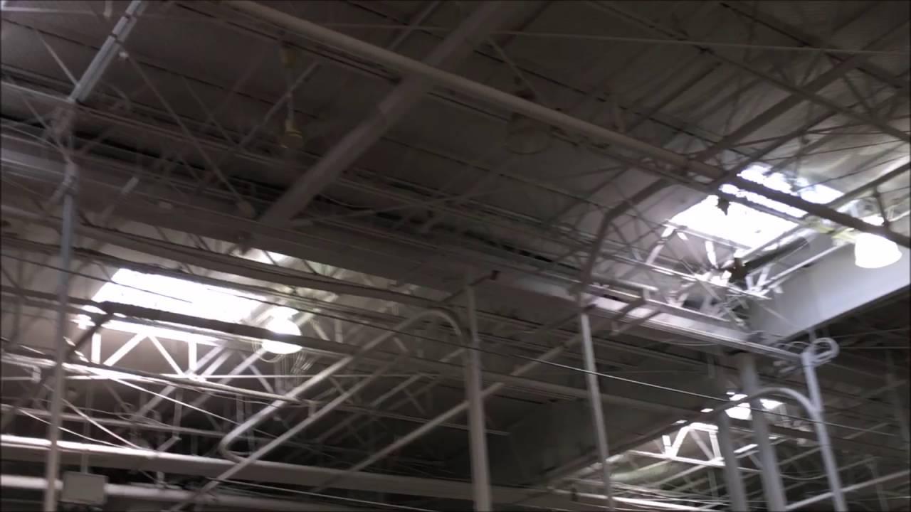 Nine 60 Dayton Ceiling Fans Costco Whole In Santacruz California