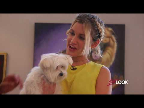 Ashley Roberts Sees the Luxurious Lifestyle of New Yorks Poshest Pooches