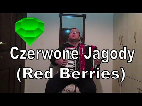 Czerwone Jagody (Red Berries) - Polish Folk Song - Accordion