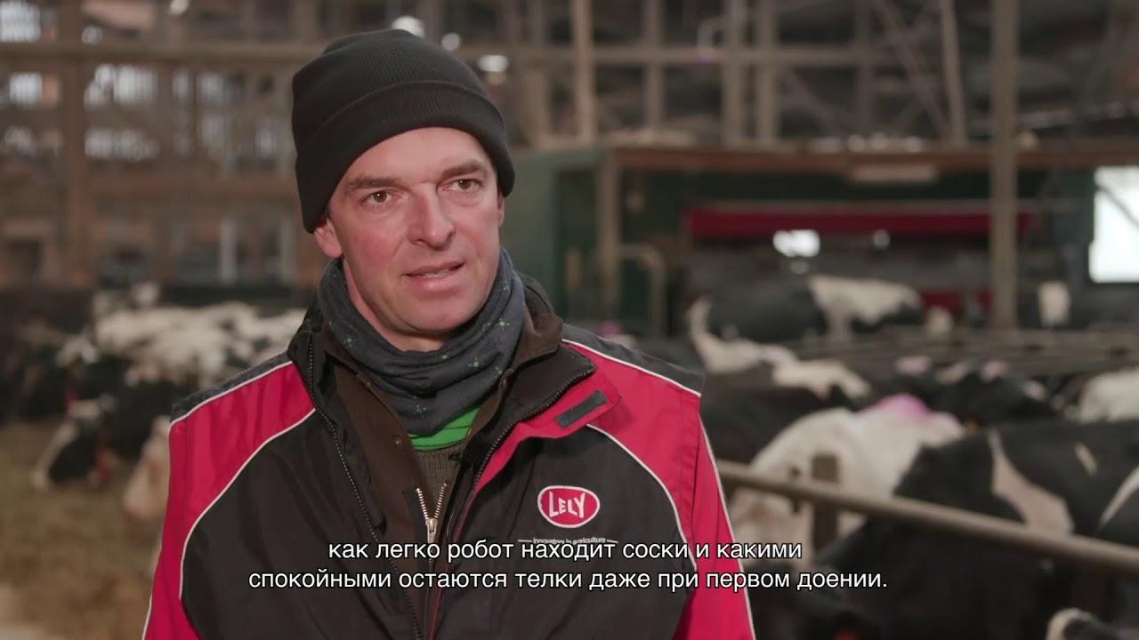 Компиляция видео – Lely Astronaut A5 pilot customers – RU