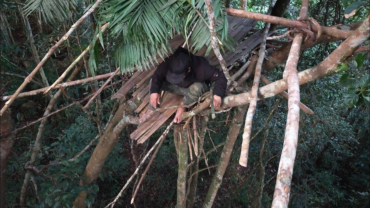 ทำห้างบนต้นไม้เพื่อส่องดูสัตว์-AKHA NOI