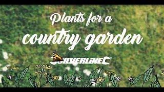 растения для сада в деревенском стиле  (переведено ландшафтной студией