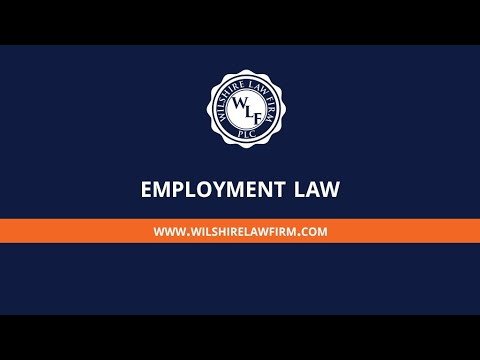 Employment Lawyer - Nicol Hajjar - Wilshire Law Firm