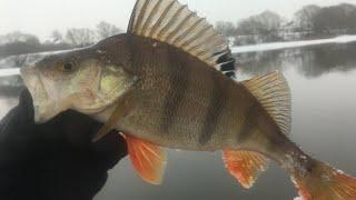 Нижняя Москва река ЗИМНИЙ СПИННИНГ ДЖИГ в Январе 2020 Рыбалка на спиннинг зимой