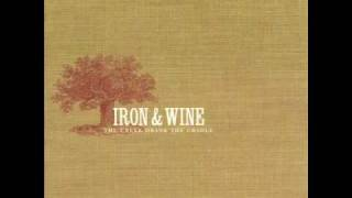 3--Faded From The Winter--Iron & Wine