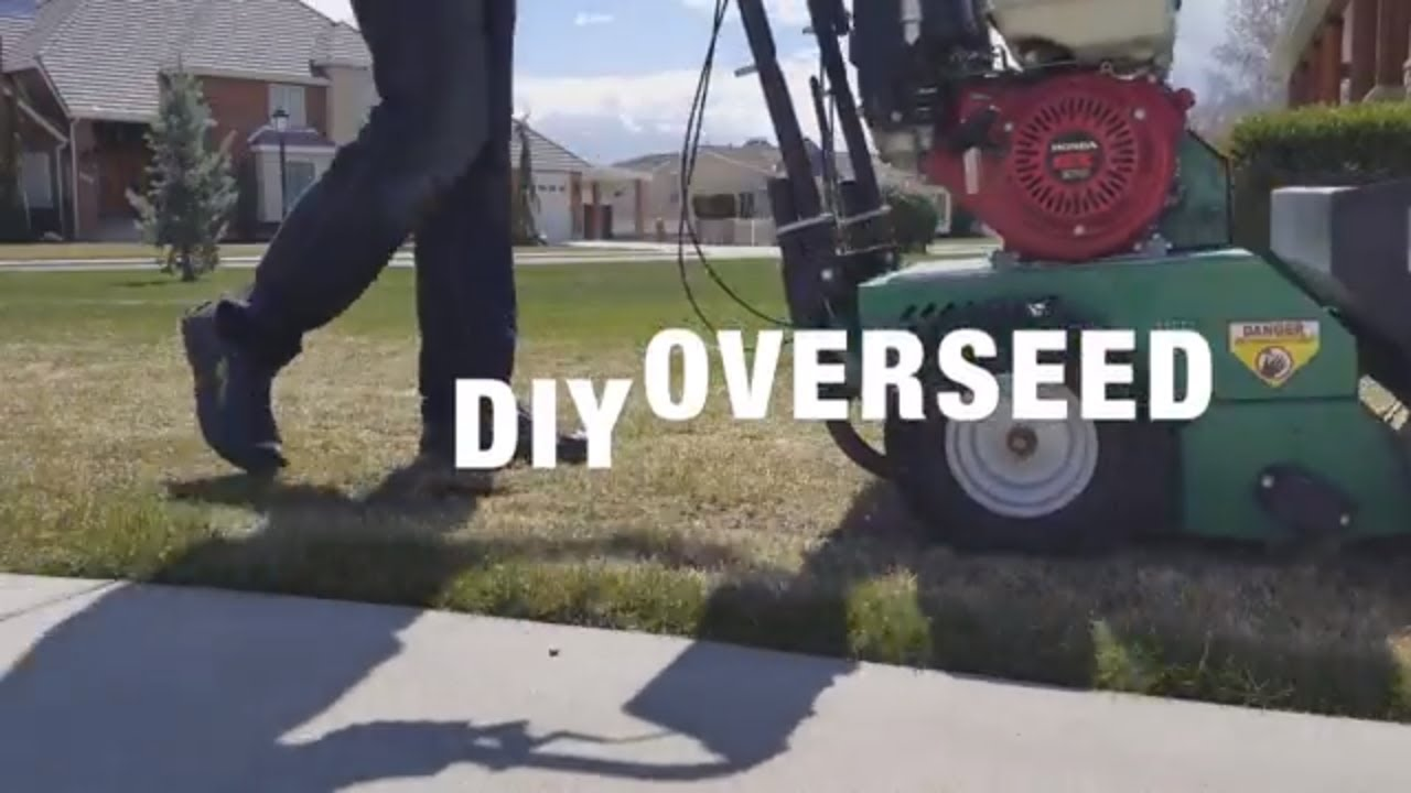 How To Overseed With A Split Splice Seeder Billy Goat Model Os900sph Lawn Overseeder