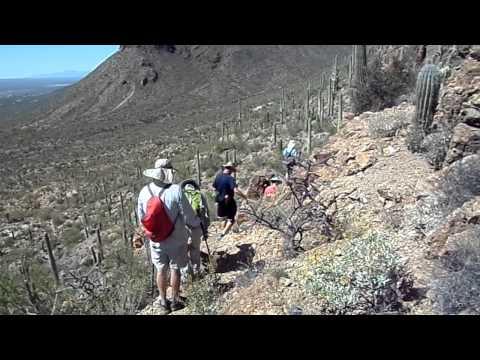 Tucson Mountain Park Hiking Near Gates Pass