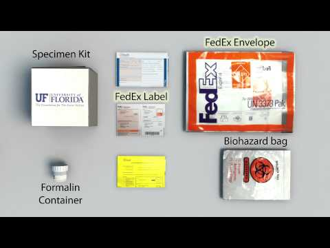 UF Health Pathology Laboratories Nerve Specimen Collection and Handling Tutorial