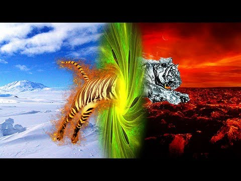 Photoshop - Fire/Ice Tiger Photo Manipulation - YouTube