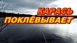 Хорошая рыбалка на карася в начале ноября