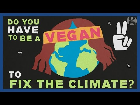 Do you have to be a vegan to help fix climate change? | Keep it in the ground