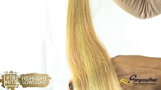 #18A/#613 Honey Blonde/Beach Blonde