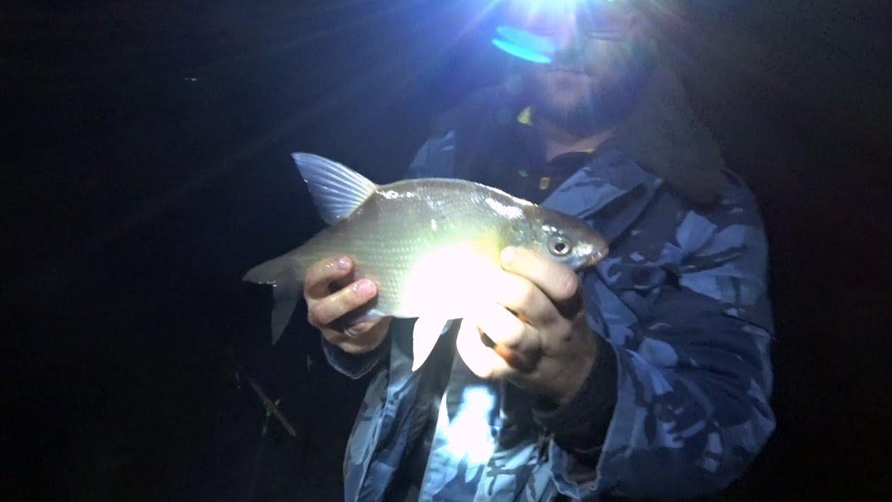 Клев рыбы в черноисточинске
