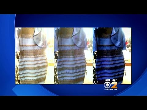 Blue and gold dress debate