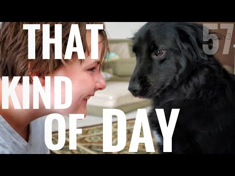 """These Are The Kind Of Days I Say """"Another One"""""""