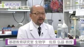 麻布大学 研究室紹介05_佐原 弘益 教授