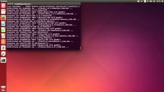 Ubuntu 14: Programme mit dem Terminal installieren