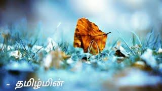O crazy minnal | Naduvula konjam pakkatha kaanom | Tamil song