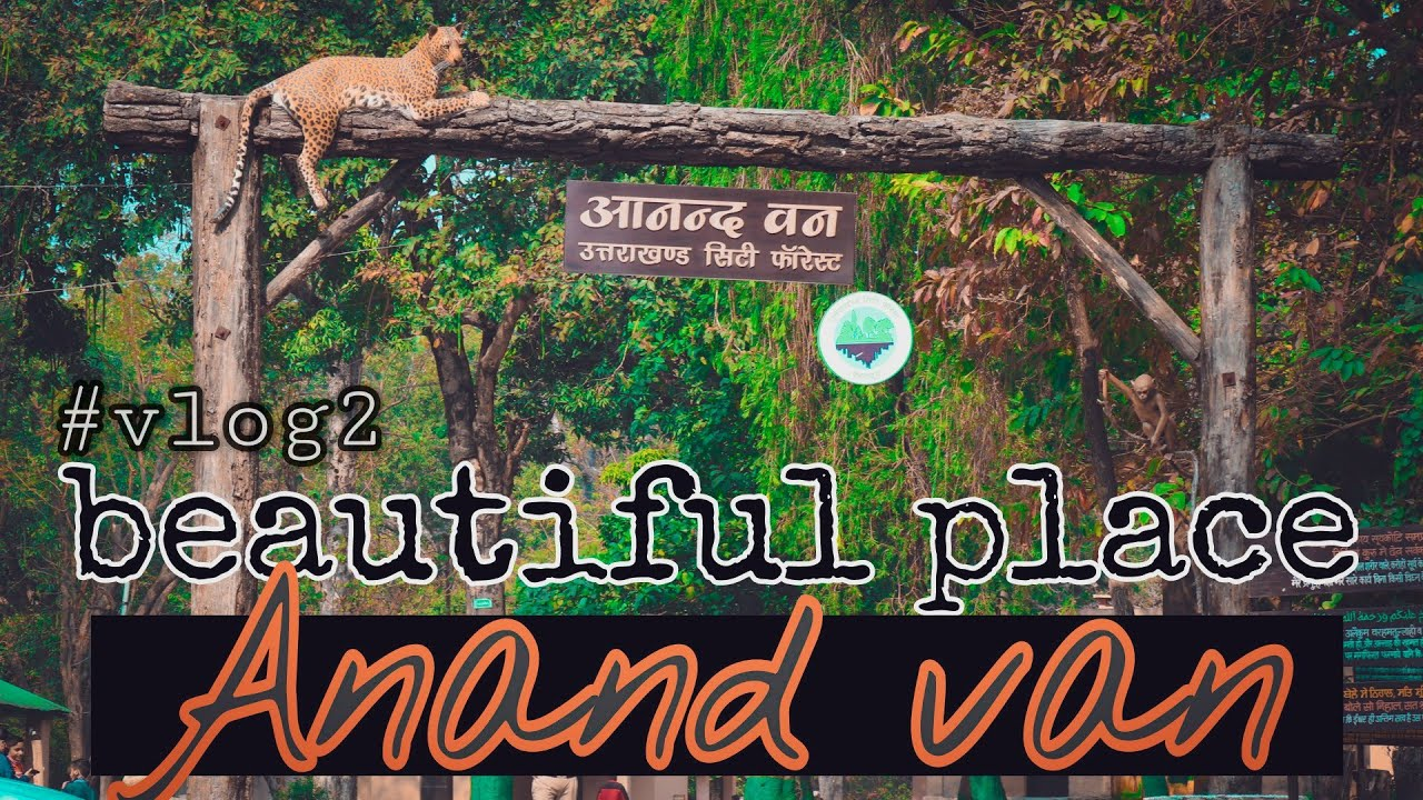 Download Anand Van    Urban forest    Dehradun    Nature beauty    best place for visit   