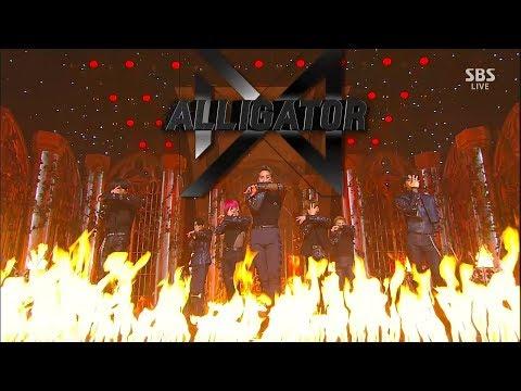 MONSTA X (몬스타엑스) - Alligator Comeback Stage Mix 무대모음 교차편집