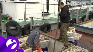 20 мая вступает в силу запрет на рыболовство на реке Обь