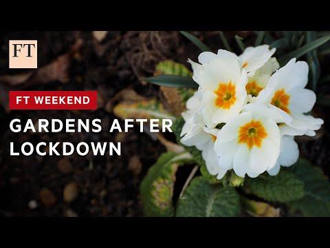 Robin Lane Fox: all the joys of spring gardening I FT