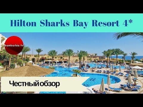 Честные обзоры отелей Египта: Hilton Sharks Bay Resort 4*  (Шарм-Эль-Шейх, Шаркс Бей)