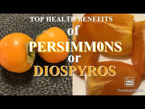 PERSIMMONS | TOP HEALTH BENEFITS OF THE RIPED FRUIT