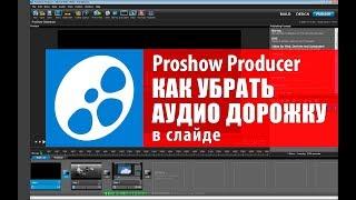 Proshow Producer видео урок. Как убрать аудио дорожку в Proshow.