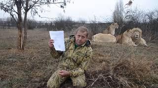 Ветеринар Иванов ВРЕТ !!! Все животные привиты !