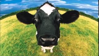 Video cow sound effects - efek suara sapi download MP3, 3GP, MP4, WEBM, AVI, FLV Mei 2018