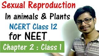 Sexual reproduction in animals and plants | CBSE biology class 12 | NCERT biology for NEET exam