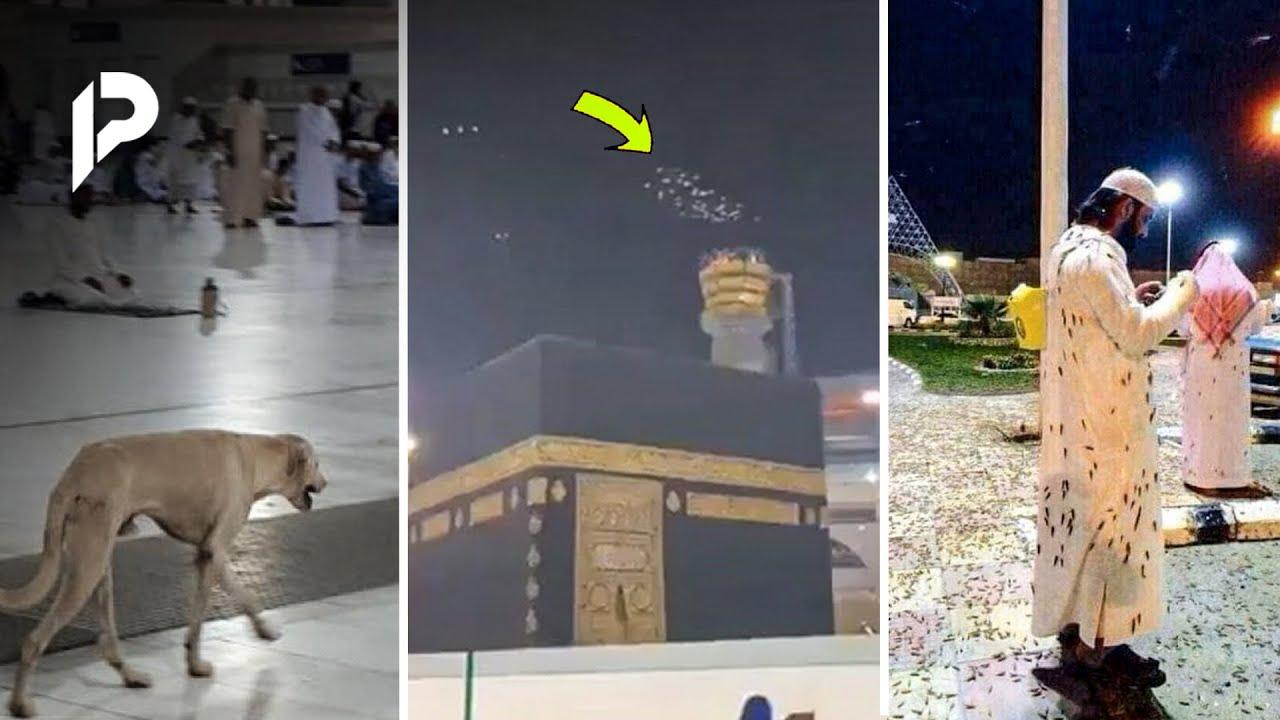 Netizen Dibikin Heboh! Fenomena Langka yang Pernah Terjadi di Mekkah, Pertanda Apa Ini?