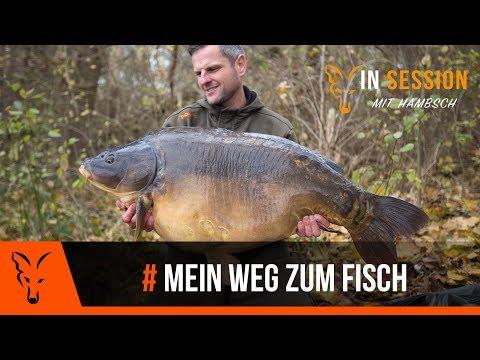 """***Karpfenangeln TV*** """"IN SESSION"""" mit Hambsch #1"""