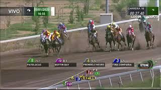 Vidéo de la course PMU PREMIO SEUL (INTERNET)