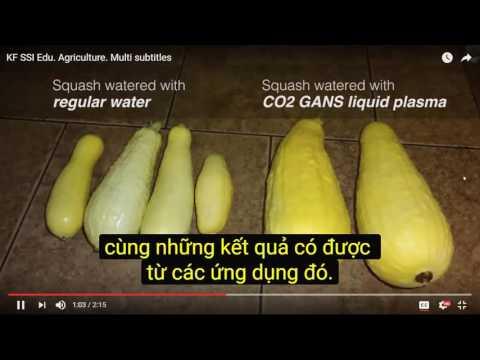2017 01 07 AM Public Teaching in Vietnamese - Buổi giảng công cộng bằng tiếng Việt