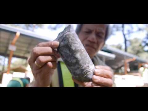 Lepanto Mining Consolidated Company