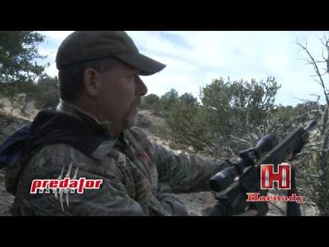 Predator Nation Is Fueled By Hornady
