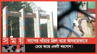 বিনোদন আগে না প্রাণী অধিকার? | Bangladesh National Zoo | Somoy TV