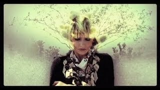 Watch Joy Formidable Cholla video