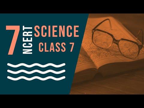 Class 7: Science (Chapter 15: Light)