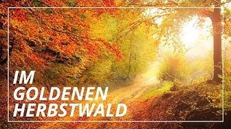 Fantasiereise: Goldener Herbsttag | Geborgenheit & Leichtigkeit