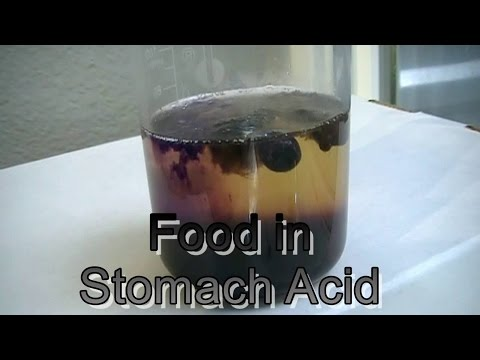 Stomach ACID food is fuel 4