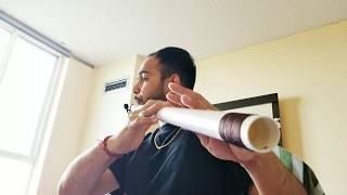 Hawa de warke | Vishal Bedi | Flute | Blessings Flutes | Ninja